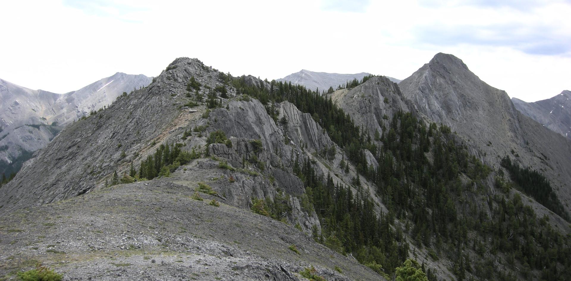 Wild Ridges in Kananaskis
