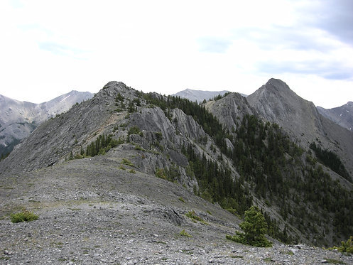 Wasootch Ridge - Now through October 30th, 2020