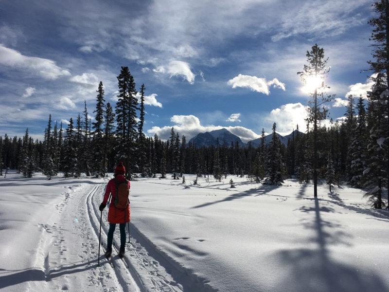 XC Ski in Lake Louise - Level 1 + Tour
