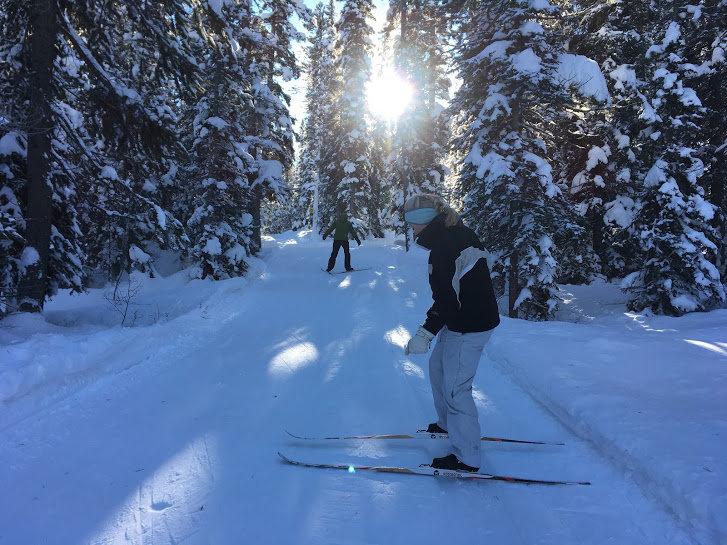XC Ski in Lake Louise - Level 2