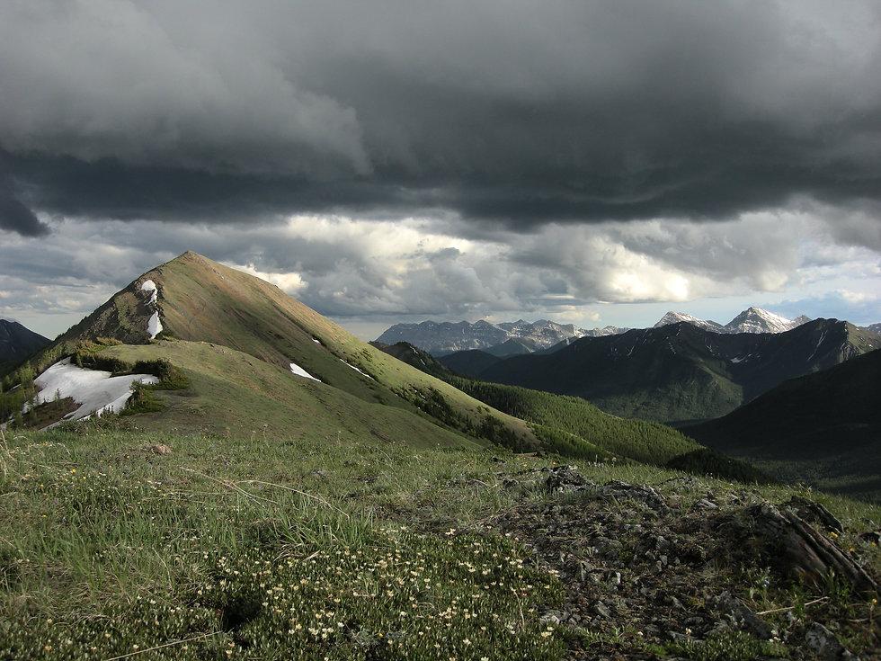 Wild Ridges
