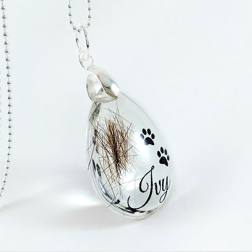 Pet Hair Keepsake with Paw Prints