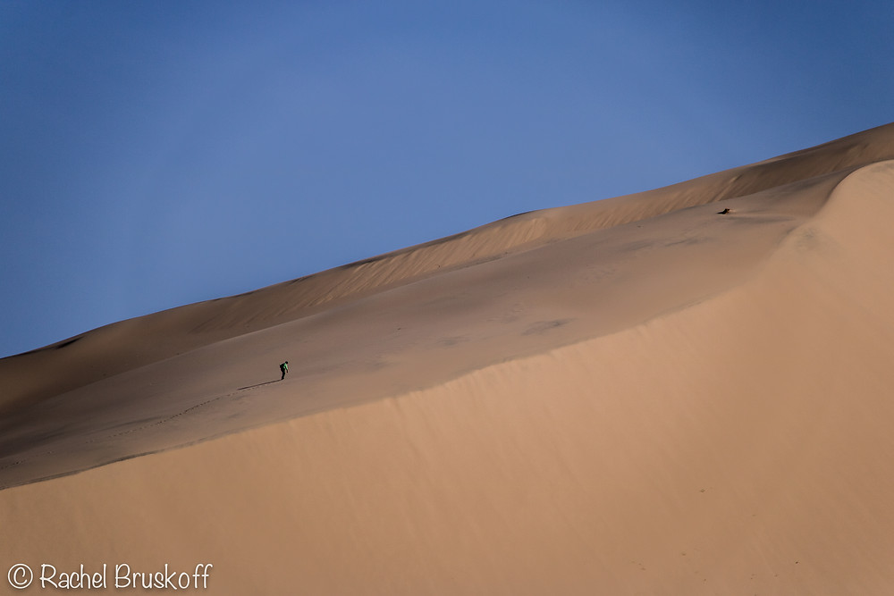 There was only one other hiking the dunes at the same time. He was only part way up when I snapped this photo. The scale is incredible.