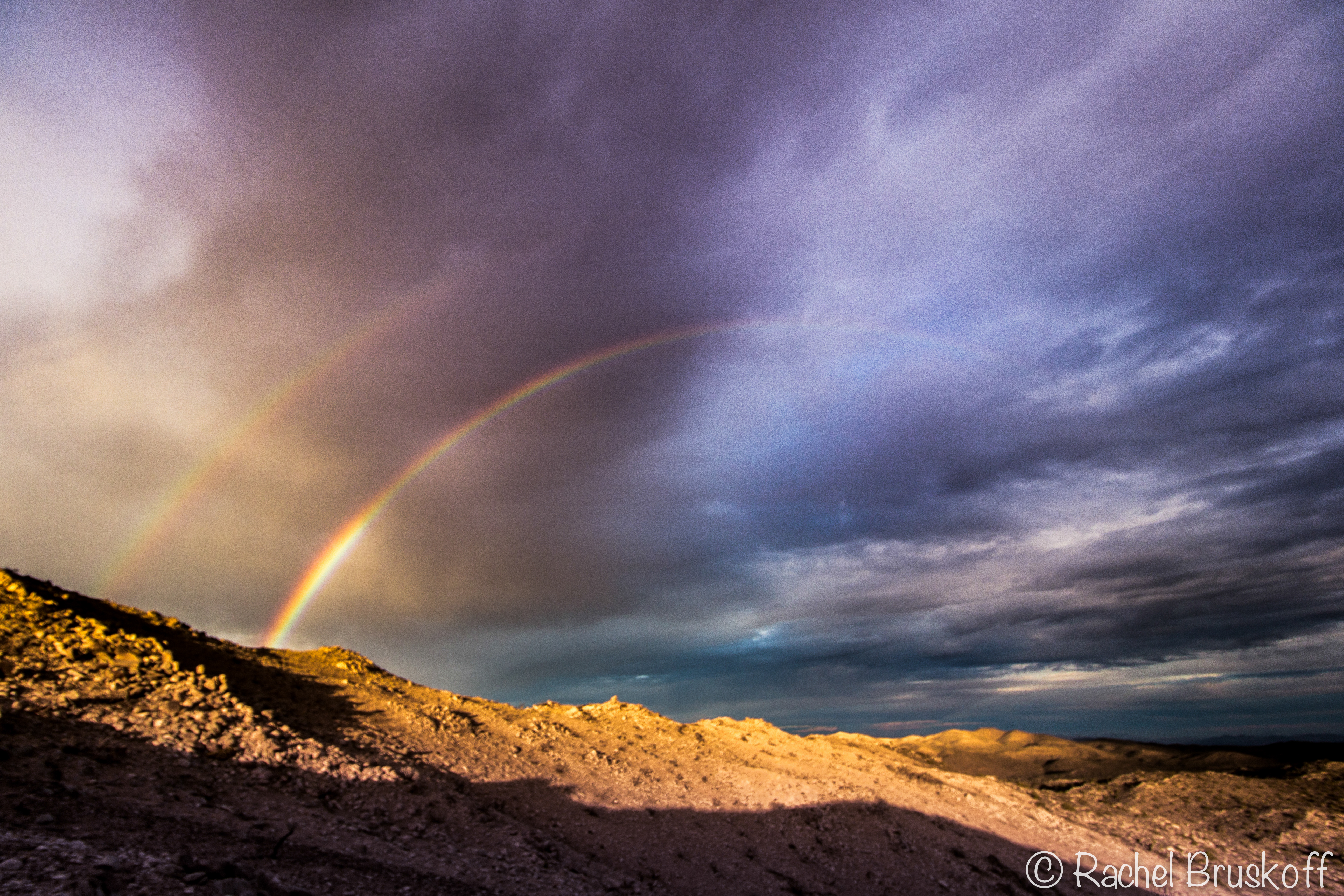 joshua tree rainbow-7528
