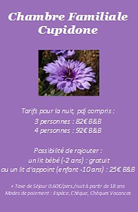 tarif cupidone.png