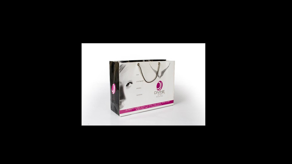 Shopping Bag for Branding and Promotions
