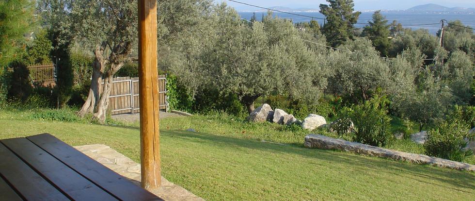 Veranda View Studio