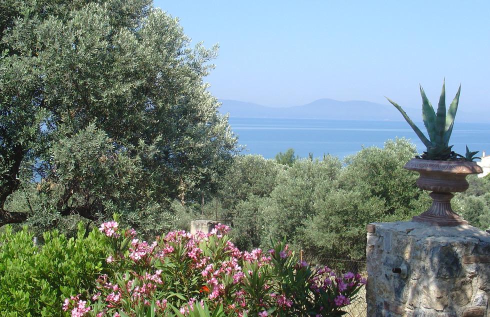 Nature and Sea