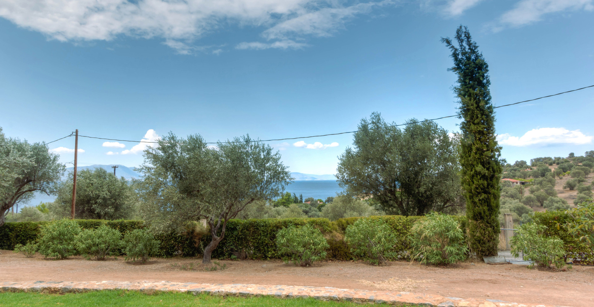 Sea Olive Groves View