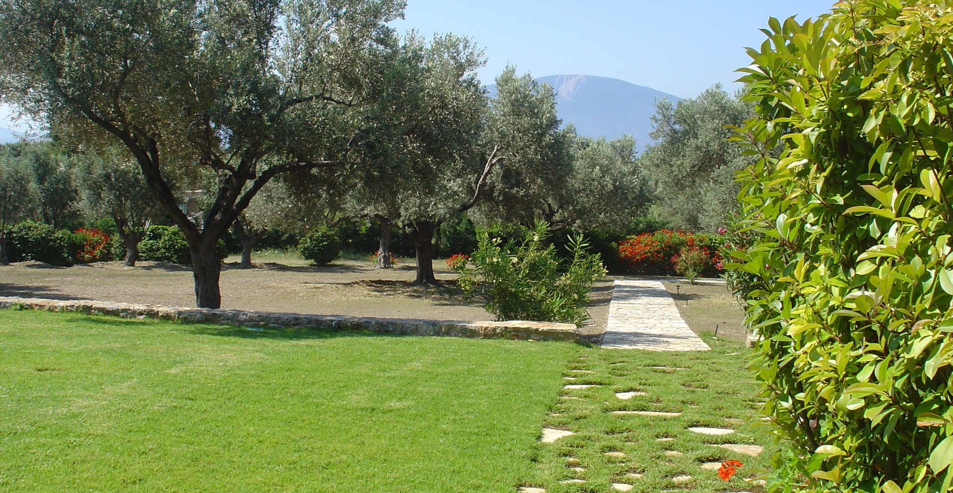 Olive Grove and Garden