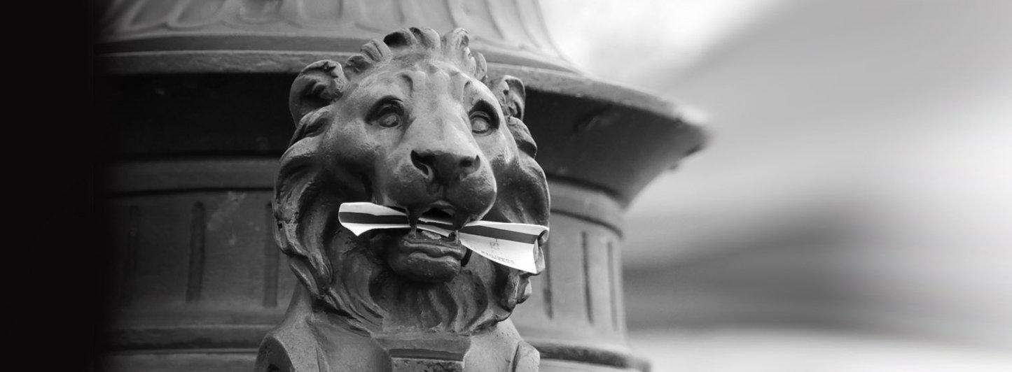 lion-metro-entete
