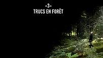 trucs en forêt
