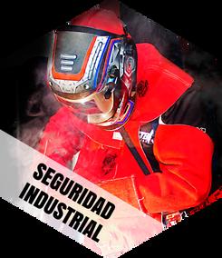SEGURIDAD-INDUSTRIAL.png