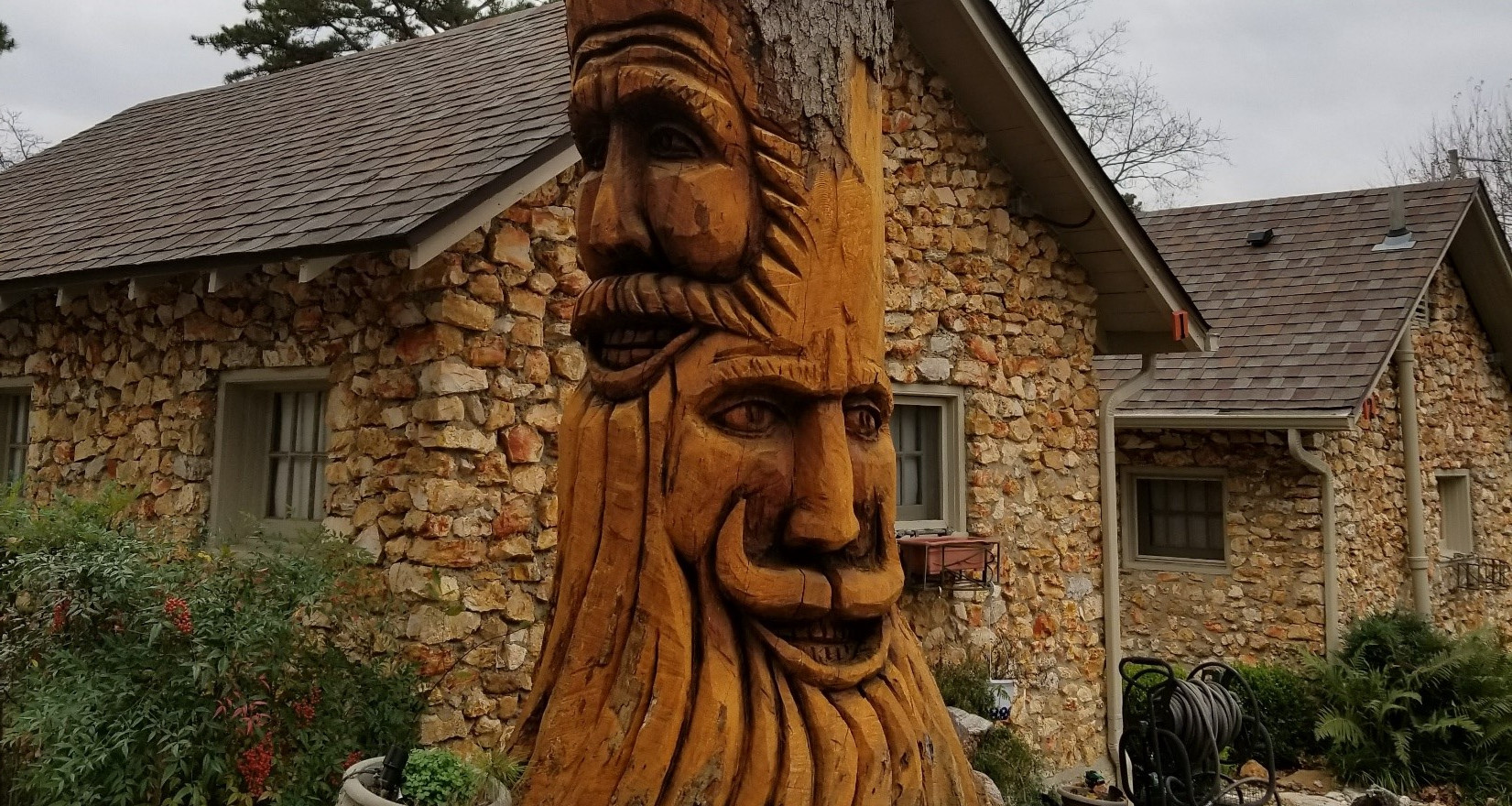 Tree Stump Faces
