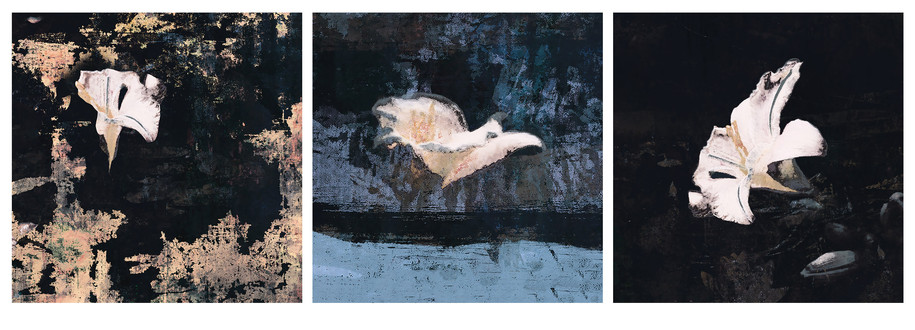 Lily Gold (triptych)