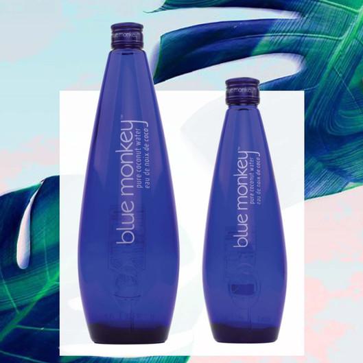 Blue Monkey Coconut Water glass bottles