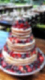 cake-1.jpeg