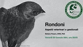 webinar rondoni.001.jpeg