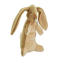 velveteen-rabbit-toy_1024x1024 (1).jpeg