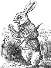 the-white-rabbit-418x640 (1)_edited.jpg