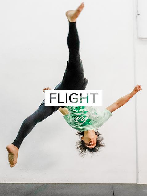 Flight New 2.png