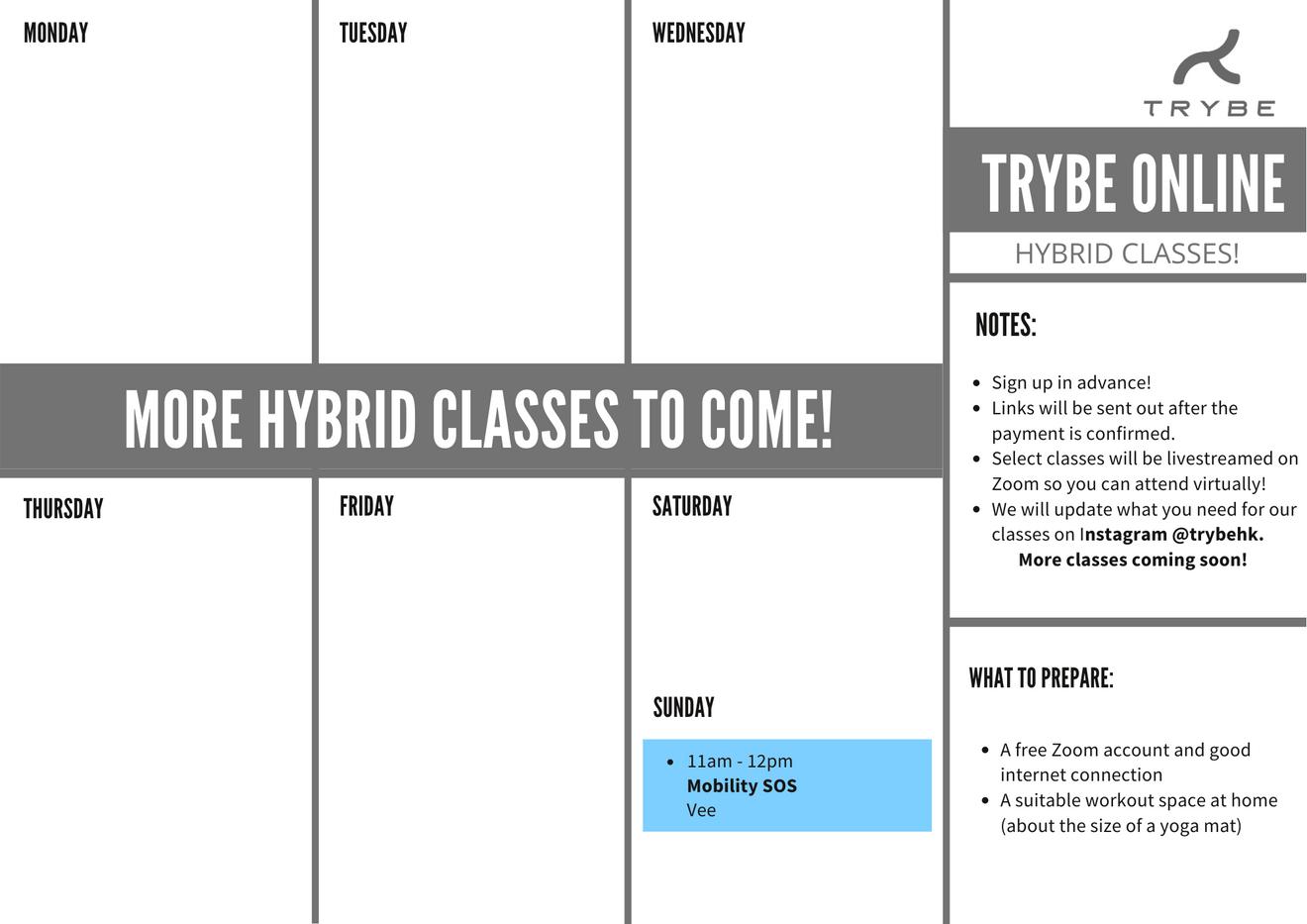 Hybrid Zoom Classes