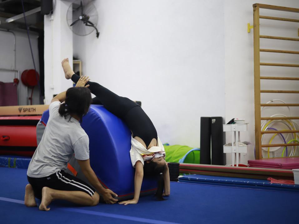 Gymnastics Level 1