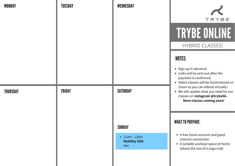 HYBRID Zoom Classes!