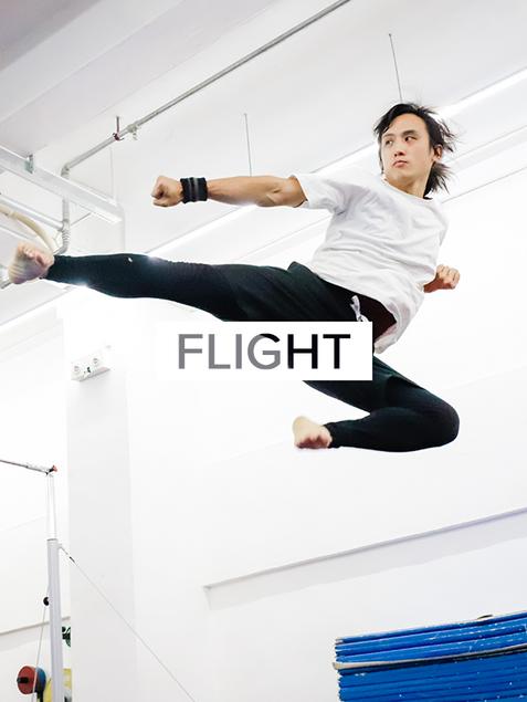 Flight New.png