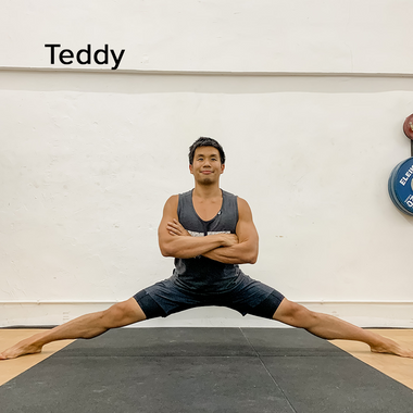 view profile  Trybe Co-Founder + Ninja Cirque, Strength, Flight, Mobility Coach