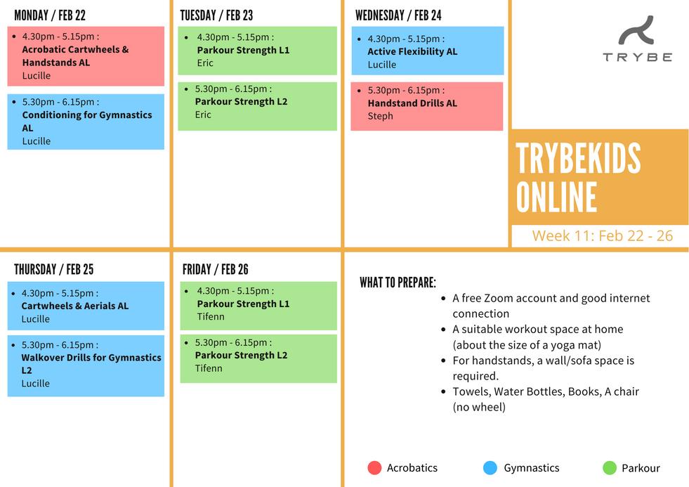 TrybeKids Week 11.png