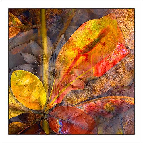 fp133. Gecko Shadow