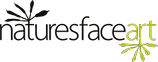 logo_st_sm.png