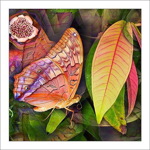 fp183. Flutterby Leaf