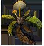 mushroom_leaves_sm_cl.png