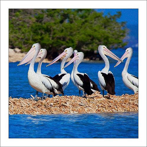 fp93. Pelican Sands