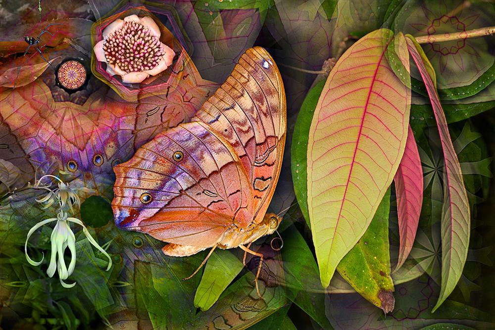 Flutterby leaf