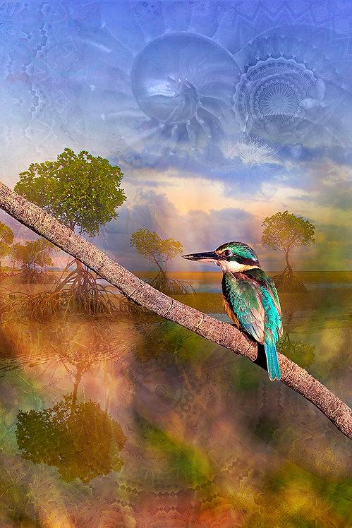 Kingfisher tide