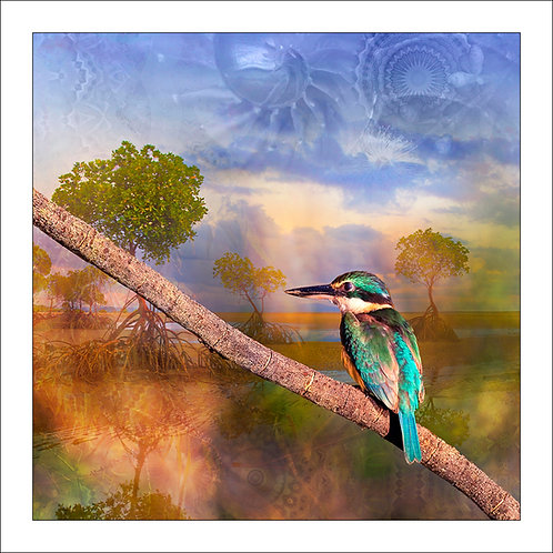 fp246. Kingfisher Tide