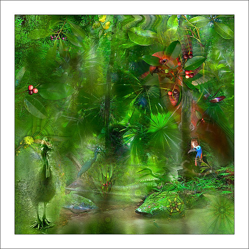 fp189. Birds Eye View