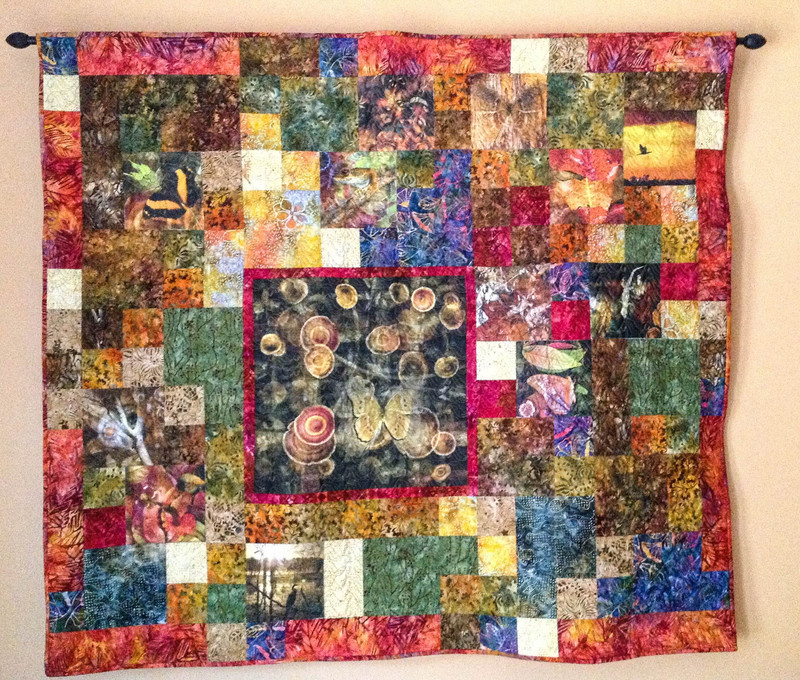 Quilt by Taylor Anderson