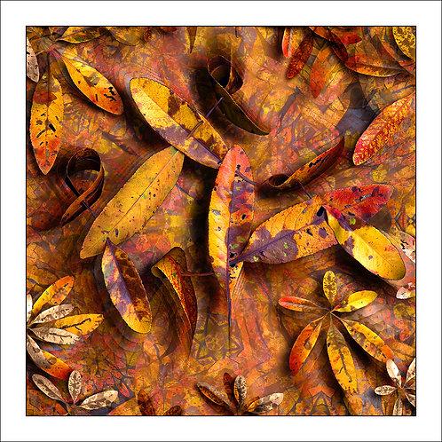 fp78. Leaf Notes