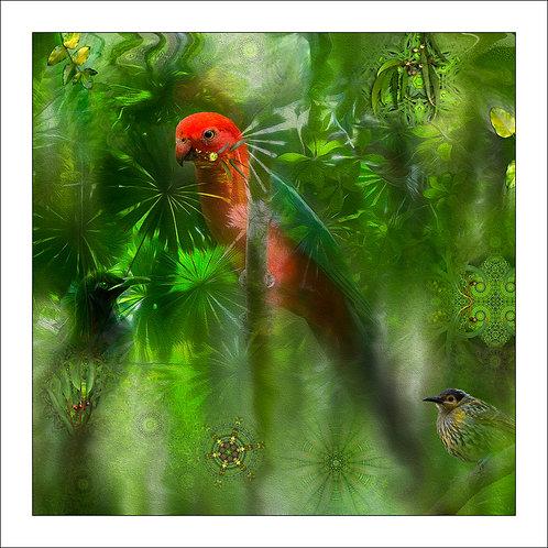 fp267. Rainforest Drops
