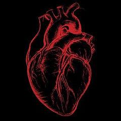 Kalp, Kardiyoloj, Anjiyografi, Damarlar, Arter
