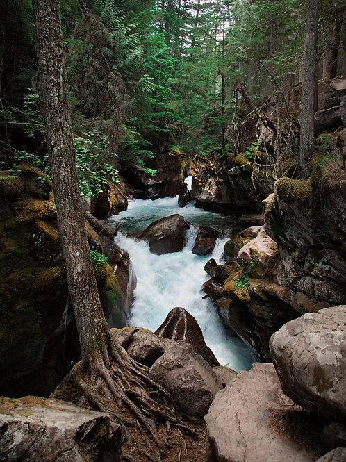 """Rush"" - Mary Bailey Glacier National Park"