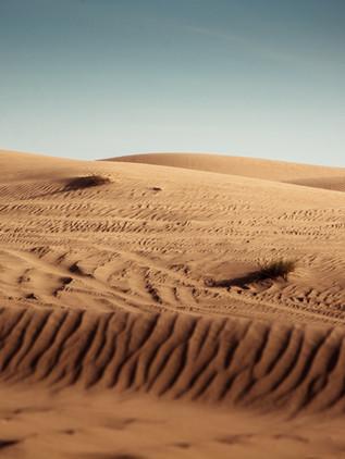 SANDPITS IN ABU DHABI