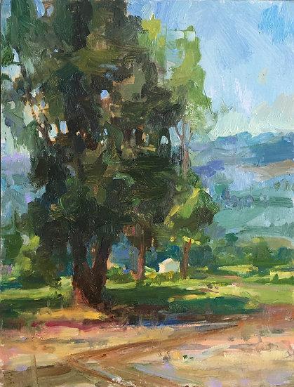 Joanne R. Kollman
