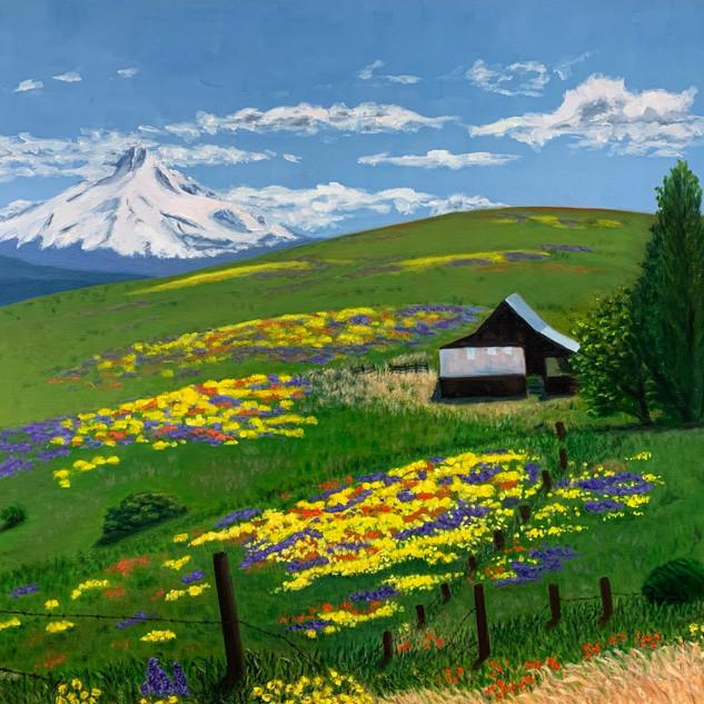 Spring at Mountain Ranch