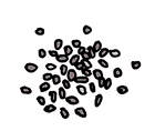 Baghera, le premier produit d'Enfin, est à base de graines de Chia