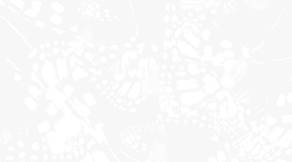 yetzerStudio_phillyInsectsAR_background.
